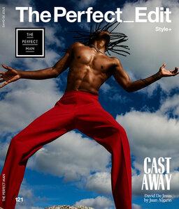 david-de-jesus-the-perfect-man-0